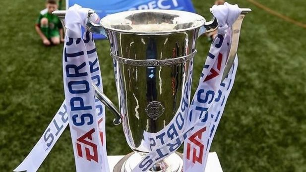 Image of the EA Sports cup
