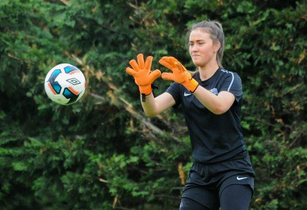 Shels sign Sophie Lenehan